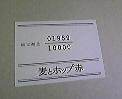 Image12001